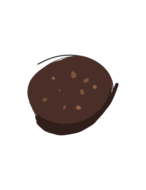 illustration of coconut chocolate cookie